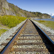 Railroad Tracks in the wilderness near Anchorage.