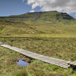 Boardwalk across the marsh to Ingleborough from Chapel-le-Stile.
