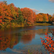 Typical fall scene in the Boston area, Massachusetts.