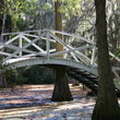 Bridge over South Carolina swamp.