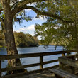 Chiefland - Lower Suwannee National Wildlife Refuge