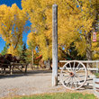 Fall colors on an Idaho Ranch.