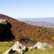 Fall in the Shenandoah Valley, Shenandoah National Park.