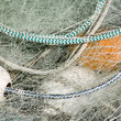Fishing net and white floats, Columbia, Oregon.