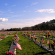 Flag and graves at the Delaware Veterans Memorial Cemetery.