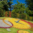 Flower Clock, Geneva.