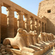 Ram-headed sphinxes deposited in the first court in the Temple of Karnak, Luxor.