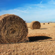 Large hay rolls in Kansas field.