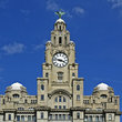 Top of the Liver Building in Liverpool.