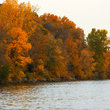 Fall foliage on the shore of Lake Calhoun.