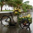 A coconut cart in Mumbai.