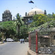 Pigeons in front of the Kothari Kabutarkhana, built in the 18th century in Mumbai.
