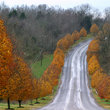 Country road bordered by fall colors, Nashville, Tennessee.