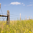 Old fence runs through a field in rural Wyoming.