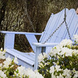 Garden swing with azaleas, Savannah.