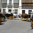 Horse and carriages in Seville.