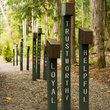 Signs line a path at Scout Camp in Washington.