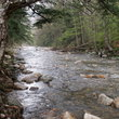 Stream in Northeast Vermont.