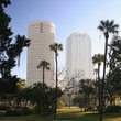 Green space and highrises in Tampa.