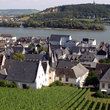 View over Ruedesheim.
