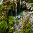 Waterfall over moss, Oregon.