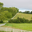 White fence around horse farm in Virginia.