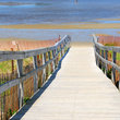 Wooden boardwalk over sand dunes, Maine.