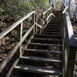 Wooden stairs in Raven Rock State Park, North Carolina.