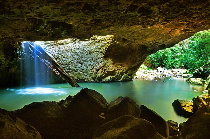 Natural Bridge Springbrook National Park Map