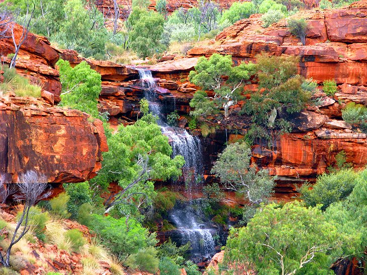Kings Canyon Australia  city photos gallery : Kings Canyon Klomiz