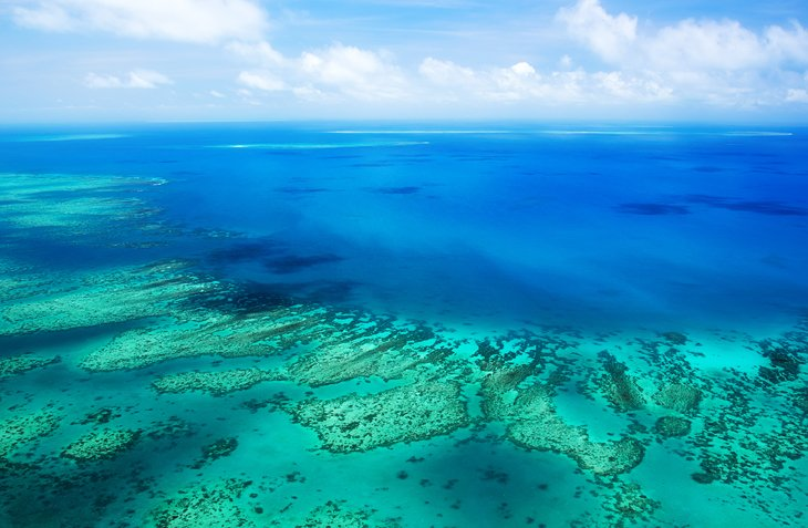 11 Top Rated Tourist Attractions Amp Things To Do In Cairns