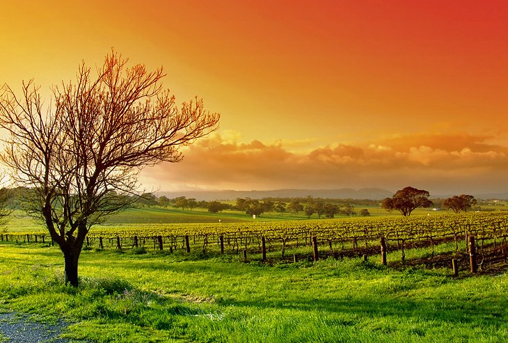 10 Top Rated Tourist Attractions In South Australia