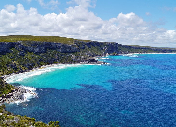 S.A.T.G.A. – South Australian Tourist Guides Association