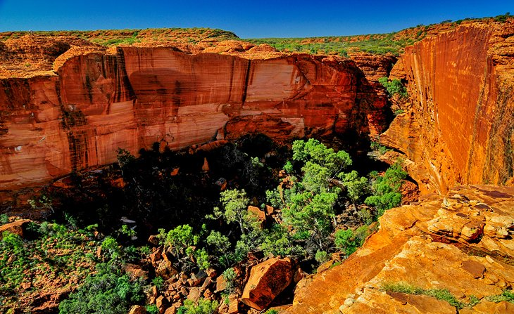 Kings Canyon Rim Walk, Northern Territory
