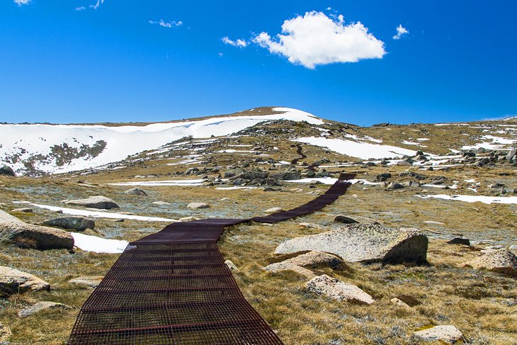 Kosciuszko Walk, New South Wales