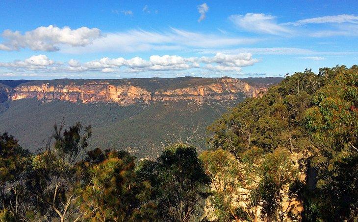 Bosque de goma azul, Montañas Azules, Nueva Gales del Sur