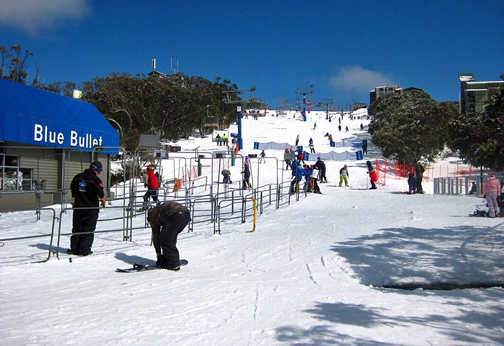 Mount Buller Skiing