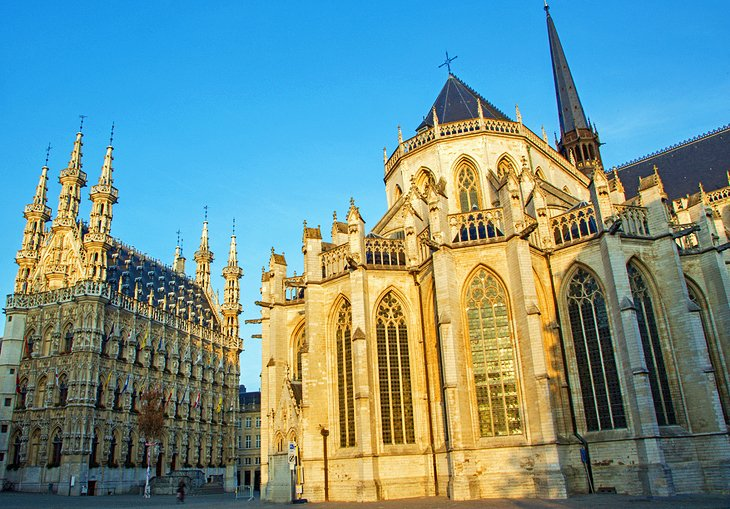 10 TopRated Tourist Attractions in Leuven PlanetWare