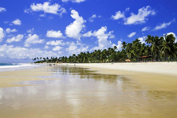 Pernambuco Beaches