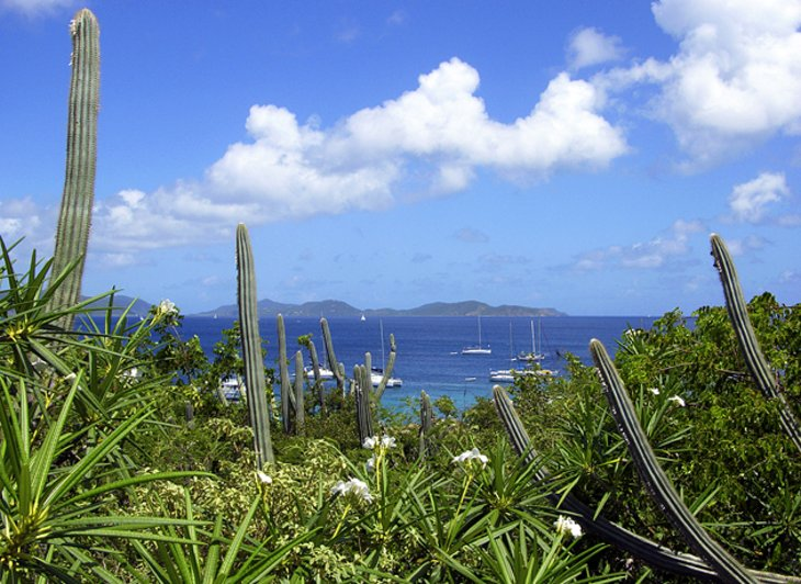 Gorda Peak National Park, Virgin Gorda