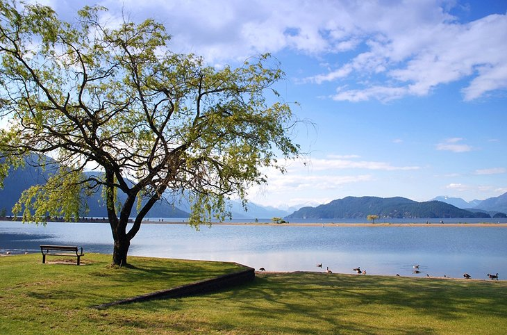 how to get to harrison hot springs from vancouver