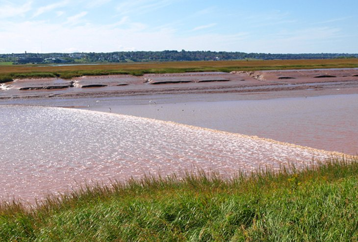 Bay of Fundy Tidal Flow