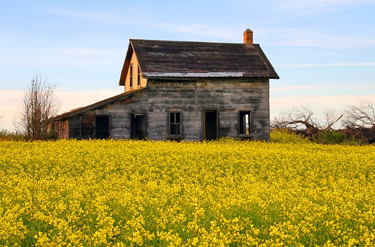 Farmhouse along the Trans-Canada Highway