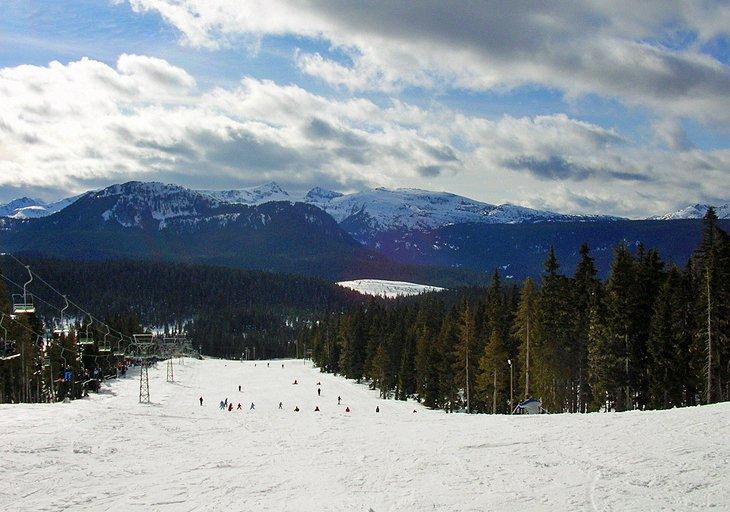 Mount Washington Ski Area Vancouver Island
