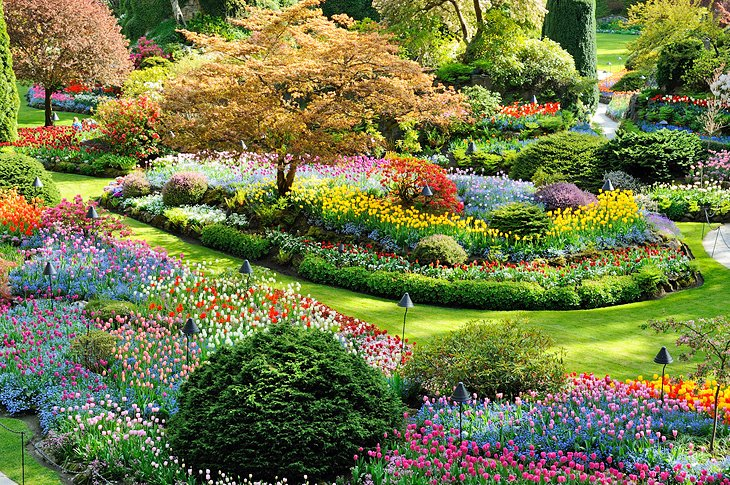 12 top rated tourist attractions in victoria british - Best time to visit butchart gardens ...