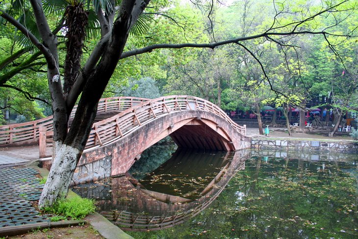 The Gardens of Wuhan