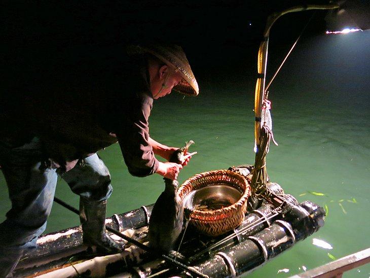 Pesca de cormoranes