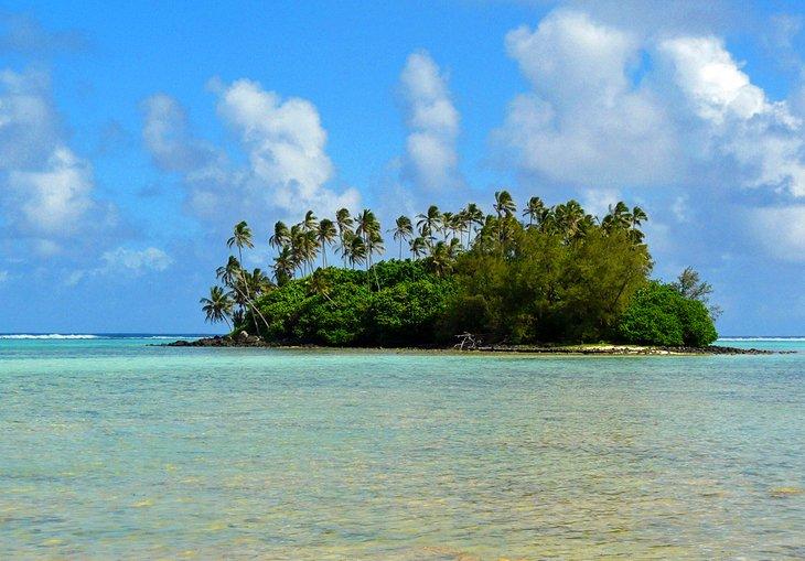 ساحل موری