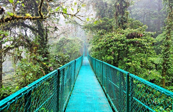 Costa Rica Bridge Tour