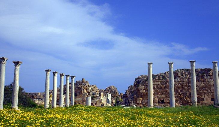 سلیم باستانی